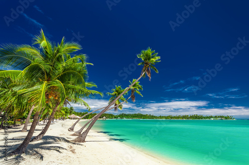 Foto op Plexiglas Strand Beach with palm trees over the lagoon on Fiji Islands