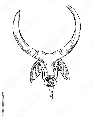 Spoed Foto op Canvas Cartoon draw The stylized image of the head of the Indian sacred cow zebu