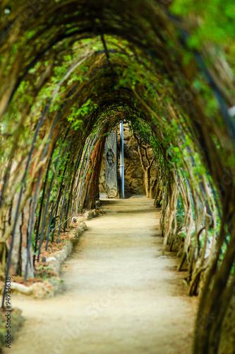 Photo  Park Guell Tunnel, Barcelona Spain