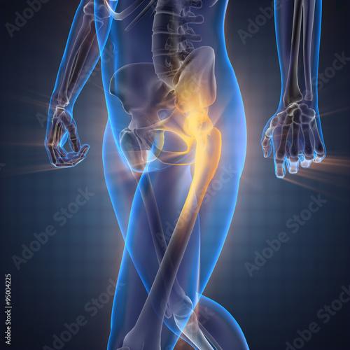 Cuadros en Lienzo human bones radiography scan image