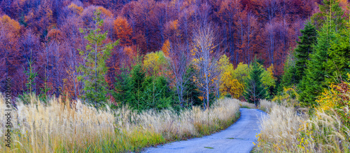 Photo sur Toile Prune Autumn in the Beskidy Mountains