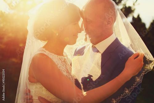 Fotobehang Illustratie Parijs adult rich bride and groom hugging kissing under the veil in sun