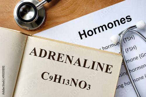 Fotografie, Obraz  Hormone Adrenaline written on book.