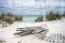 Sand Fence And Sea Oats At Flo...