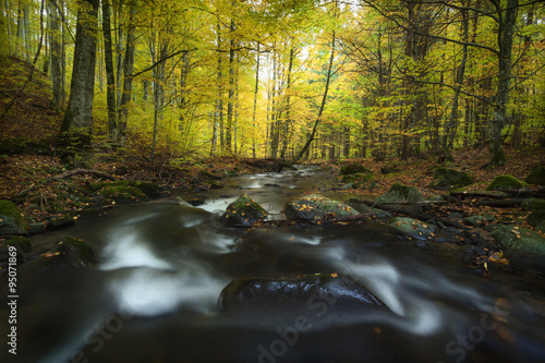 Autumn landscape on a mountain river