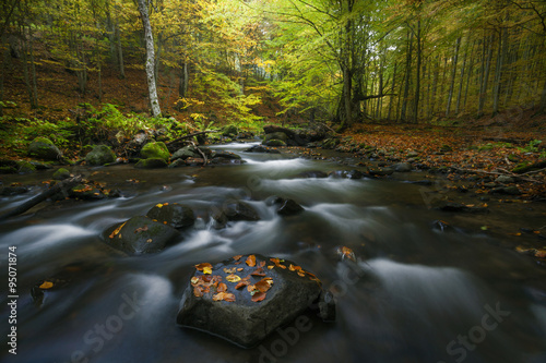 Poster Bos rivier Autumn landscape on a mountain river