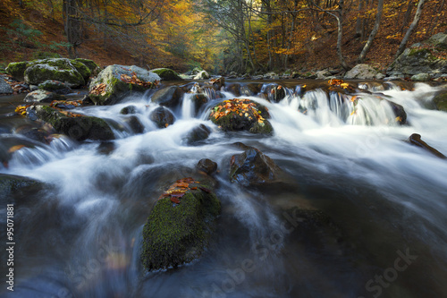 Fotobehang Bos rivier Autumn landscape on a mountain river