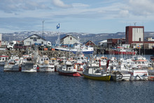 Fishing Boats In The Harbour At Patreksfjordur, West Fjords, Iceland
