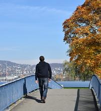 Jardin Public En Bordure Du Lac De Zurich En Automne