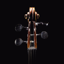 Violin Head Details