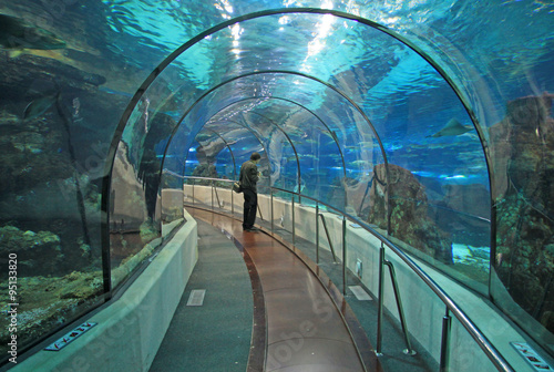 Papiers peints Barcelona BARCELONA, CATALONIA, SPAIN - DECEMBER 14, 2011: Transparent tunnel in Barcelona Aquarium in Barcelona, Spain