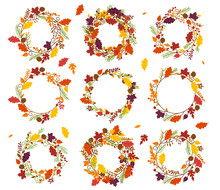 Vector Collection Of Thanksgiv...