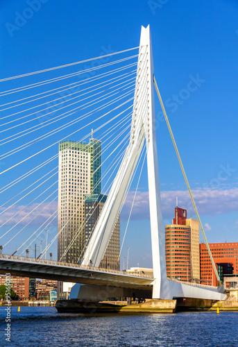 Staande foto Rotterdam View of Erasmus Bridge in Rotterdam, Netherlands