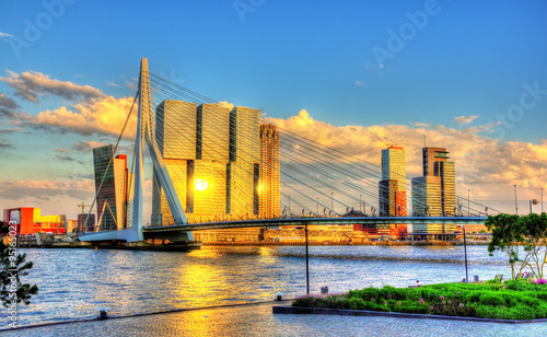 In de dag Rotterdam Erasmus Bridge in Rotterdam - Netherlands