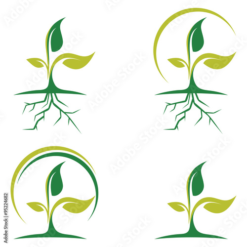 Leaf and Root of Green Plant Logo Icon Plakát