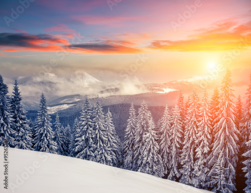 Tuinposter Purper Amazing winter in the mountains