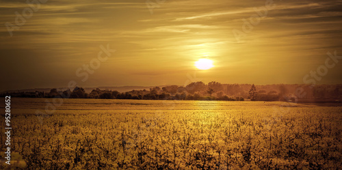 Fotobehang Cultuur Golden sunset
