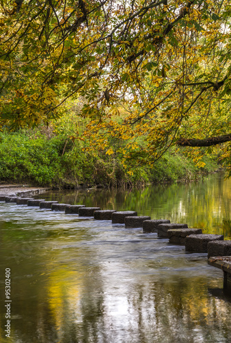 Fotografie, Obraz  Stepping Stones over the river Mole at the foot of Box Hill, Surrey, UK