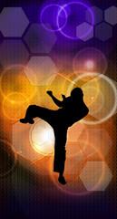Fototapeta Sztuki walki Martial arts