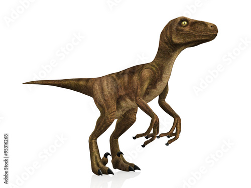 Photo  3D model Velociraptor isolated on white background