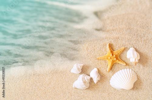 Starfish on the beach. Summer beach.