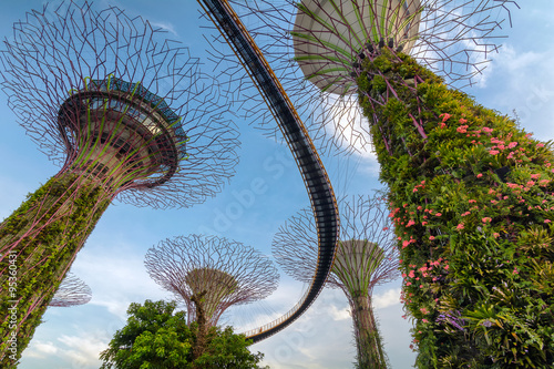 Tuinposter Singapore Supertrees at Gardens by the Bay -Singapore