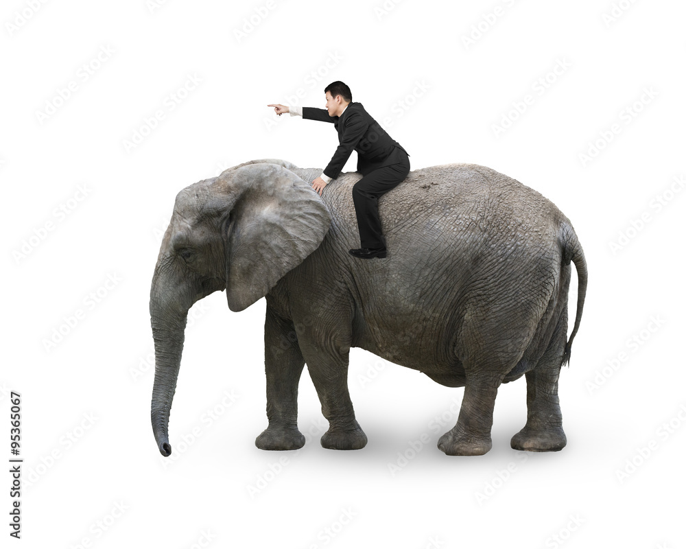 Man with pointing finger gesture riding on walking elephant