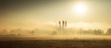 Paesaggio Campestre Nebbioso