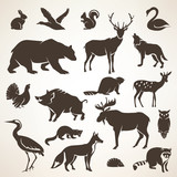 european forrest wild animals collection of stylized vector silh