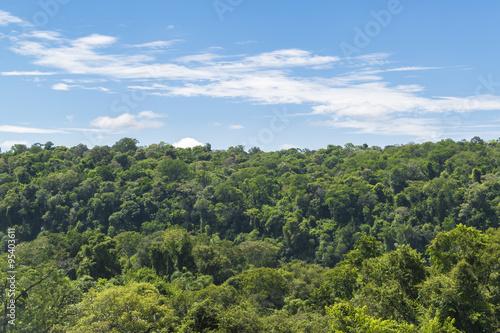 Autocollant pour porte Foret Iguazu Park Aerial View