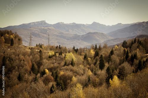 Beautiful autumn landscape. Mountains forest meadows. - 95430486