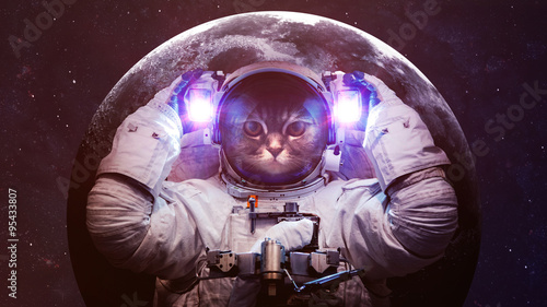 Foto op Aluminium Kat Beautiful cat in outer space. Elements of this image furnished by NASA