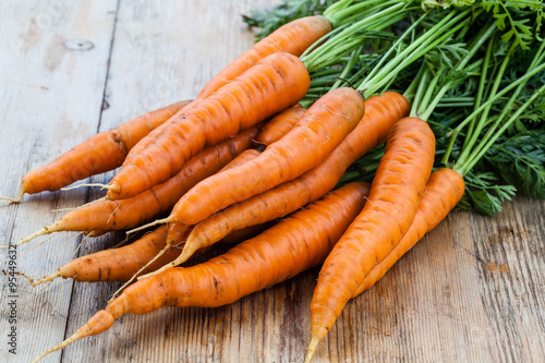 Valokuvatapetti fresh carrots bunch