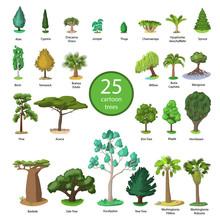 25 Diversity Of Trees Set