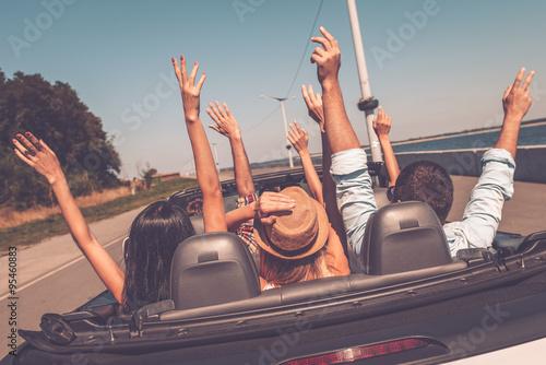 Enjoying road trip.  - 95460883