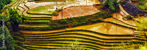 Staande foto Rijstvelden agriculture Terraced Rice Field hill