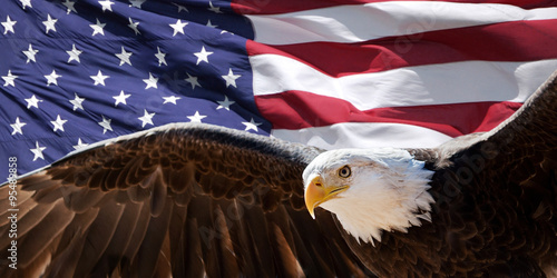 Photo Stands Eagle patriotic eagle taking wing in front of US flag