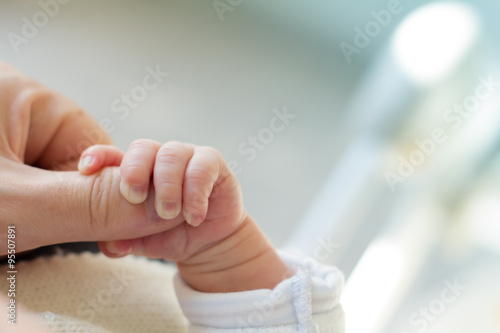 Photo  Newborn baby touching his mother hand