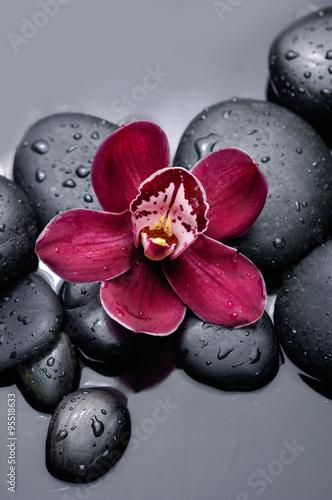 czerwona-orchidea-z-kamieniami-terapii
