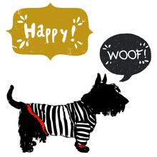 Scottish Terrier In A Sailor Shirt