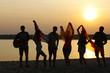 Joyful friends having fun on the shore at sunset outdoors