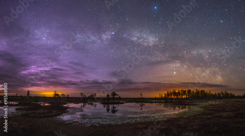 Foto op Aluminium Nacht Starry night at a swamp