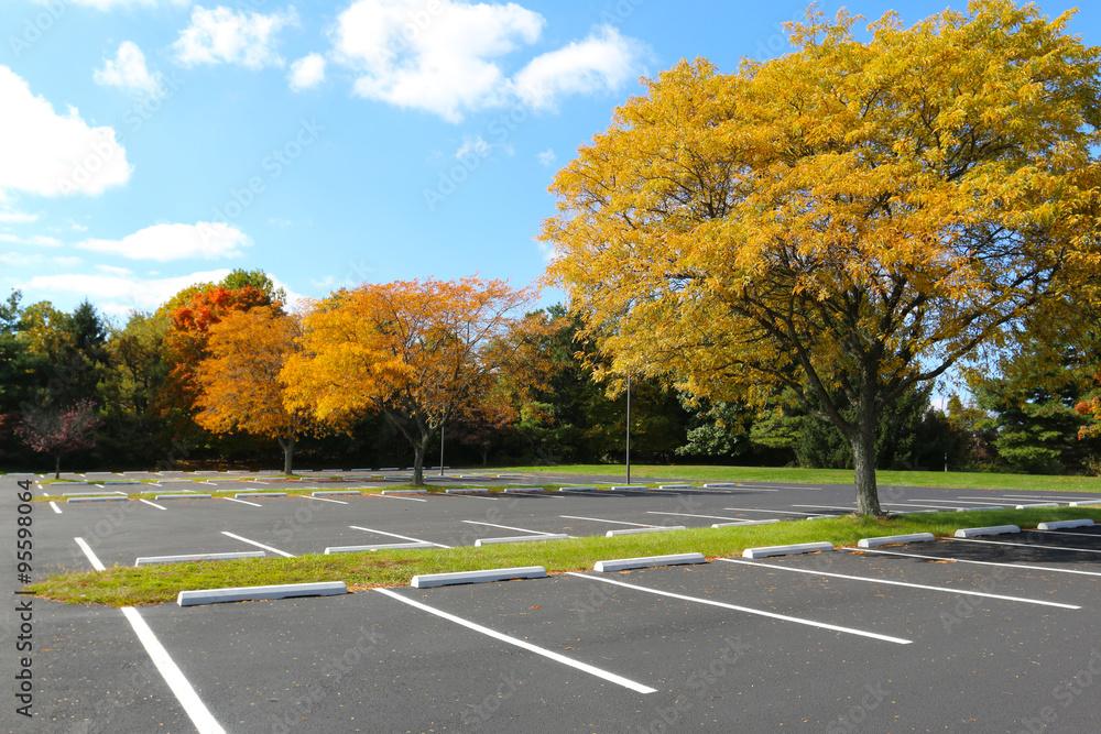 Fototapeta empty parking lot trees in autumn