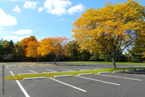empty parking lot trees in autumn