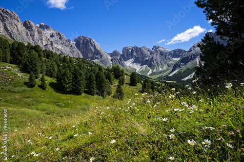 Photo Odles mountain range in Summer, Dolomites, Italy