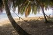 Hammock on Small caribbean Island, San Blas Islands