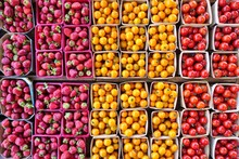 Square Containers Of Colorful Tomatoes And Strawberries At The Farmers Market In Summer
