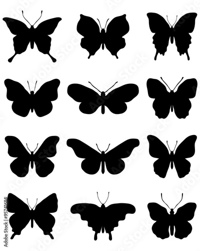 Black  silhouettes of butterflies on a white background, vector #95741684