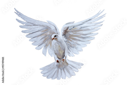 Fotomural A free flying white dove