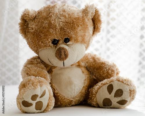 Teddy bear #95761812